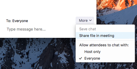 chat-share-file-in-meeting-option